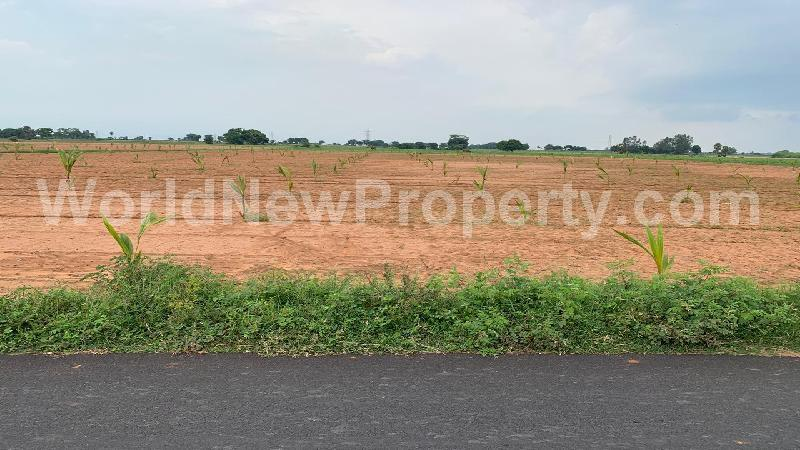 property near by Markanum, Venkatesan real estate Markanum, Land-Plots for Sell in Markanum